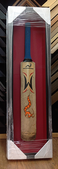 Cricket Bat framing in Surrey