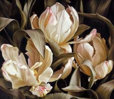 Libretto Parrot Tulips