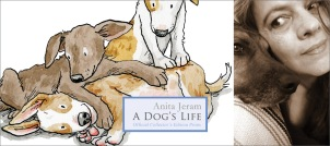 A-Dogs-LifeA