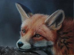 Original Fox
