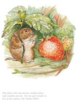 BP9033-Beatrix-Potter-I-prefer-to-live-in-the-country-Tale-of-Johnny-Town-Mouse