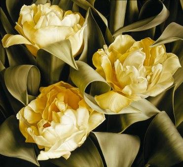 Mia Tarney Tulipa Verona
