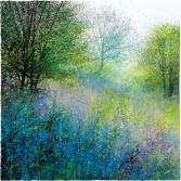 Bluebell Meadow Mounted: 640mm x 660mm