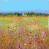 Through the Meadow Mounted: 640mm x 660mm